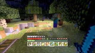 Minecraft (Video Game)