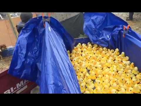Camp Cavell's 1st Winter Community Day with Duck Race