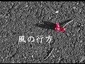及川恒平 うたとえ 『風の行方』 K.Oikawa〜Kaze-no-yukue