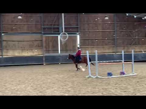 Poney de sport et de loisir - Flyer du Garon