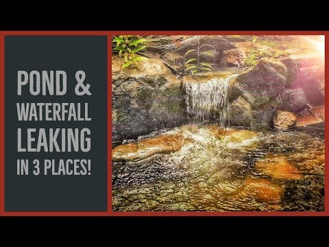 Pond LEAKING In 3 Places! How To Fix Pond And Waterfall Leaks