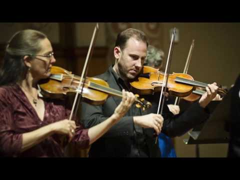 Meet the Musicians of Portland Baroque Orchestra