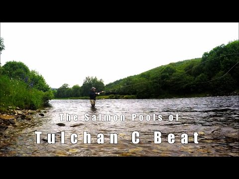River Spey - Tulchan C Salmon Fishing