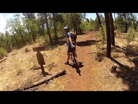 Pinetop Arizona mountain biking Blue Ridge Mountain