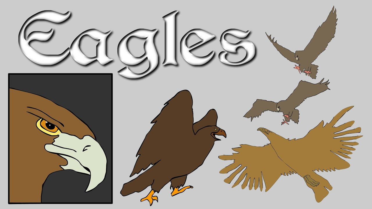focus eagles lotr youtube