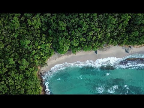 4K Caribbean drone footage • Martinique | Guadeloupe | Domin