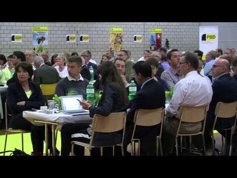 BDP Videonews DV Aarau 2015