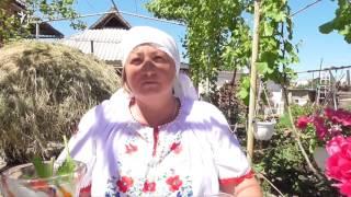 Тепло и гостеприимство молдавского дома