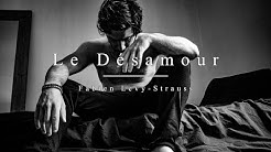 LE DESAMOUR - FABIEN LEVY-STRAUSS (LYRICS CLIP)