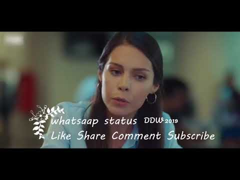 Boys Attitude Status¦Hollywood Whatsapp Status¦All Types Status¦DailyFacts