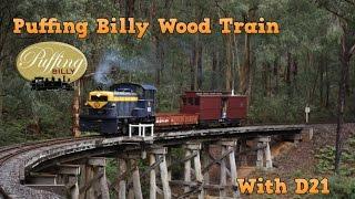 Puffing Billy Australia - Morning Wood Train