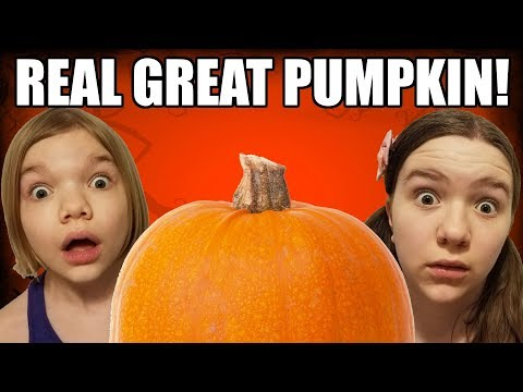 How To Catch The Great Pumpkin!  A Halloween Tale