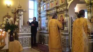27 ноября 2015 года Архиерейская служба.Крестовоздвиженский храм .Рязань(, 2015-11-29T18:14:03.000Z)