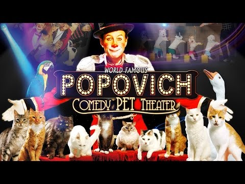 Las Vegas Family Show - Gregory Popovich Comedy Pet Theater
