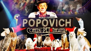 Las Vegas family show - Gregory Popovich Comedy Pet Theater