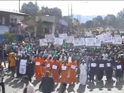UDJ Andinet Party Protest Rally in Addis Ababa