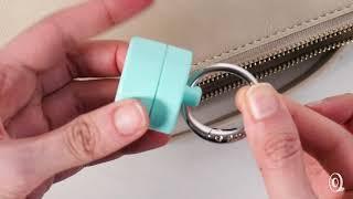 Lion Latch | Keychain Jewelry Holder