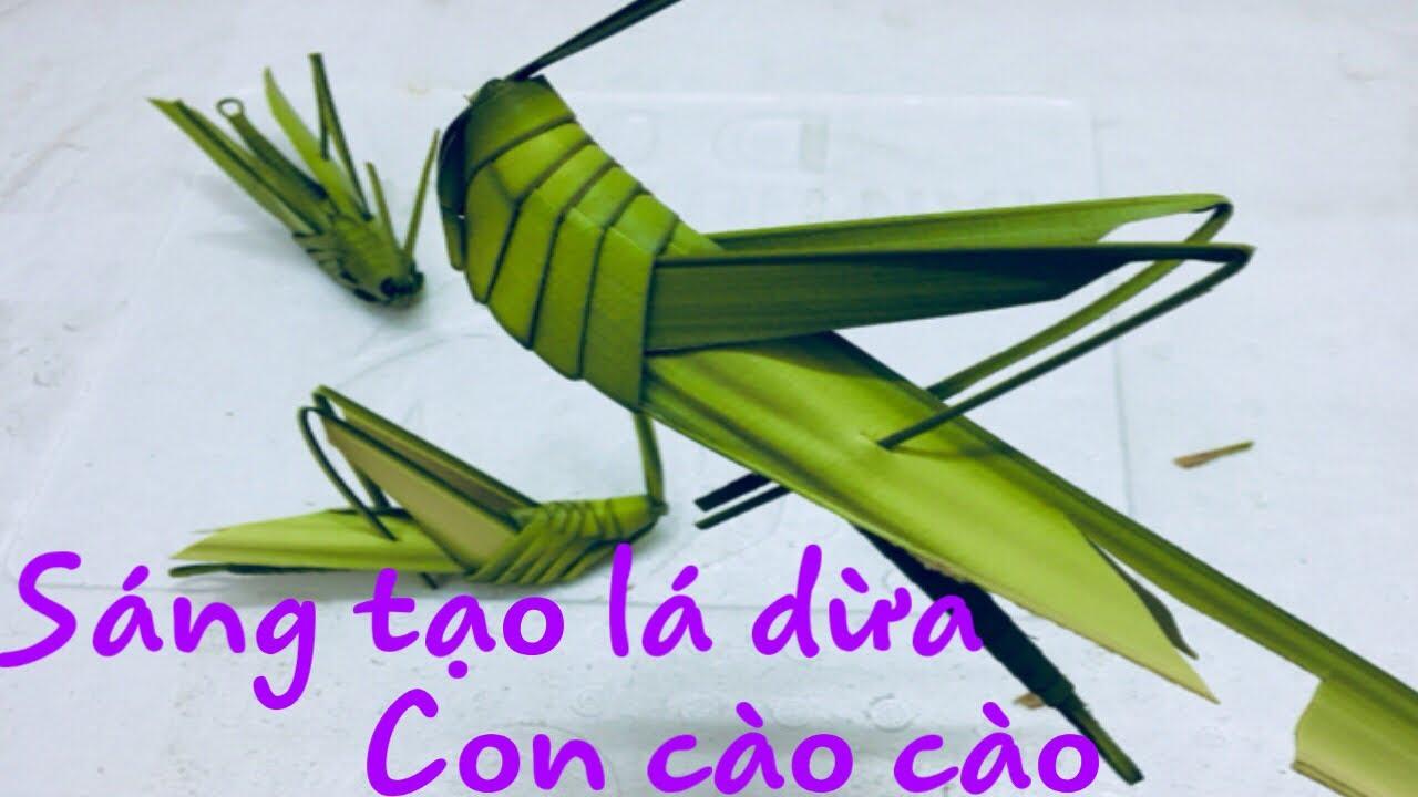 Hướng dẫn  cách làm cào cào từ lá dừa 1|SÁNG TẠO LÁ DỪA