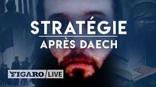 Comment les djihadistes préparent l'après Daech en prison