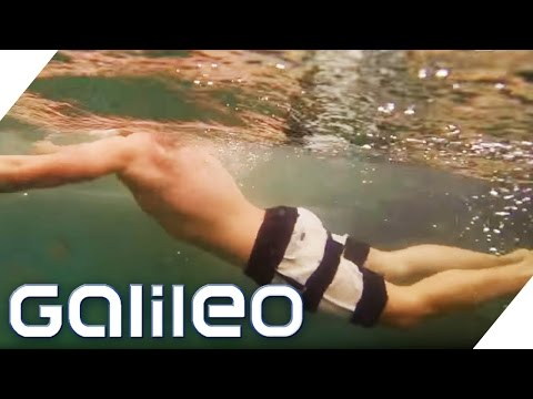 Swimming Pool mit Natur-Feeling | Galileo | ProSieben