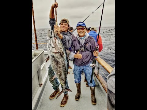 New Lo-An Bluefin Tuna Fishing With A Side Of Whale Watching