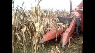 colheitadeira de milho