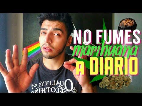 NO FUMES MOTA A DIARIO (desventajas de fumar marihuana todos los días)