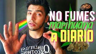 NO FUMES MOTA A DIARIO (desventajas de fumar marihuana todos los dias)