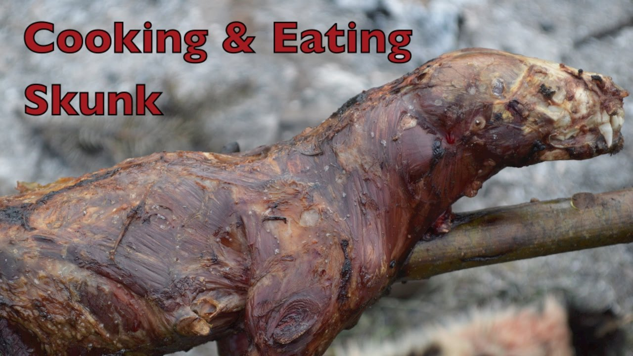 how to cook skunk meat
