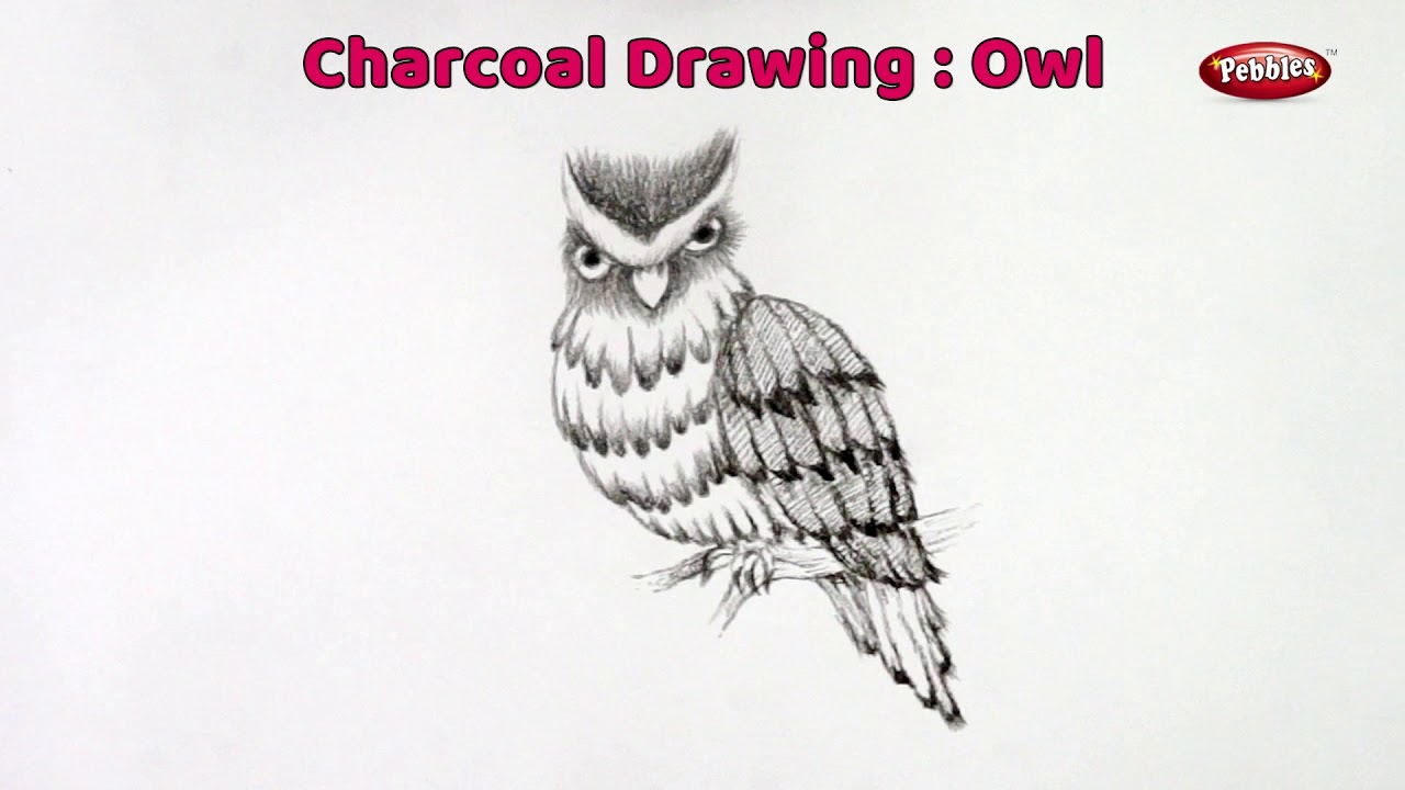 Top 10 drawing sketching charcoal pencil charcoal sketching tutorial charcoal pencil shading