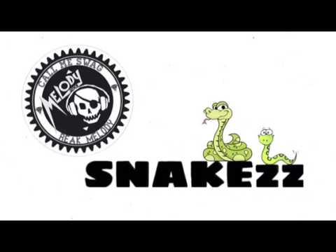 snake (Burt it down) break Thai remix 2017 dor dance