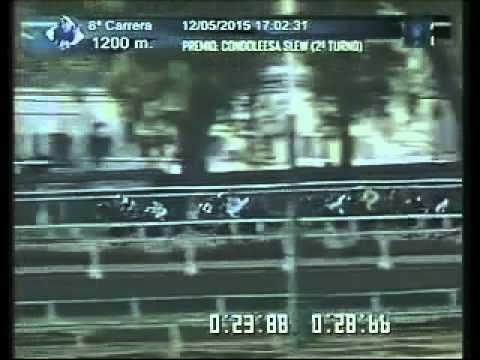 Vidéo de la course PMU PREMIO CONDOLEESA SLEW