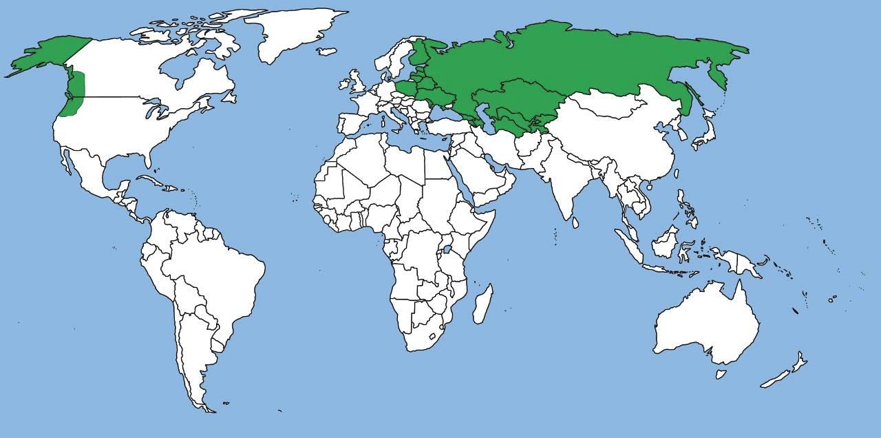 Alternate History Russia