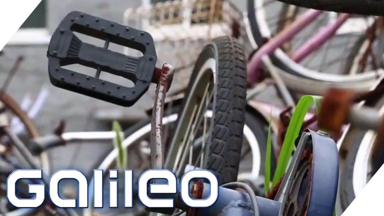 Die Fahrrad Friedhöfe In China Galileo Prosieben Youtube