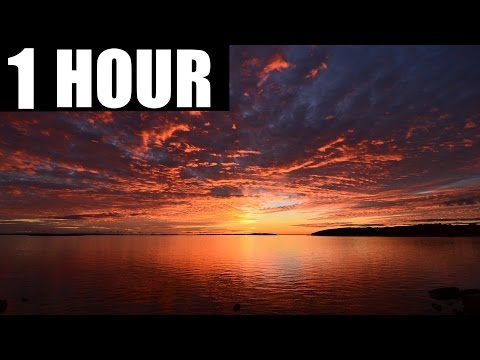 Veorra - Run (1 Hour Version)