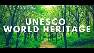 [4K]유네스코 세계유산 통도사/서운암 산책로/Worl…