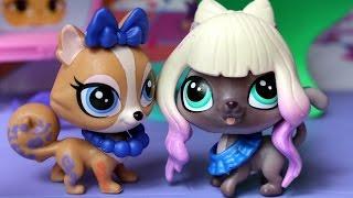 Za kulisami - Littlest Pet Shop - Scena gwiazd LPS