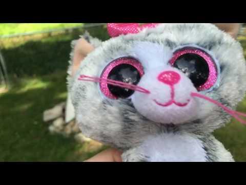 Beanie boo MV: I'm a kitty cat