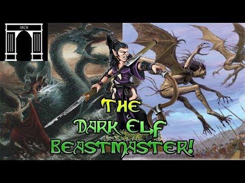 Warhammer Lore, The Dark Elf Beastmaster!