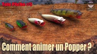 Tuto Pêche #5 Comment animer un Popper ( popper finesse )