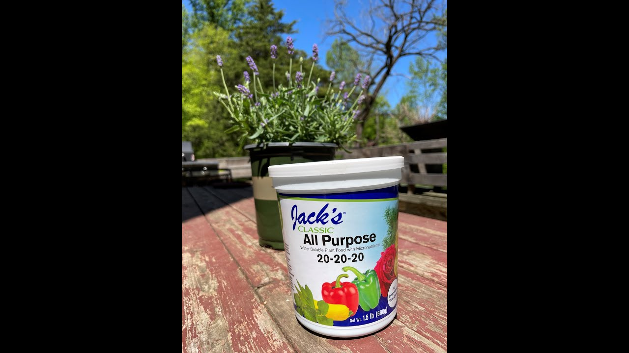 Jack'd Up Gardening #9 - Herbs