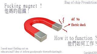 Fucking Magnets