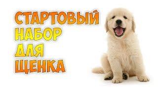 """""""Стартовый набор"""" для щенка"""