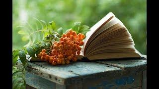 Моя книжная полка. Книги, которые вы не забудете. Книжный обзор.