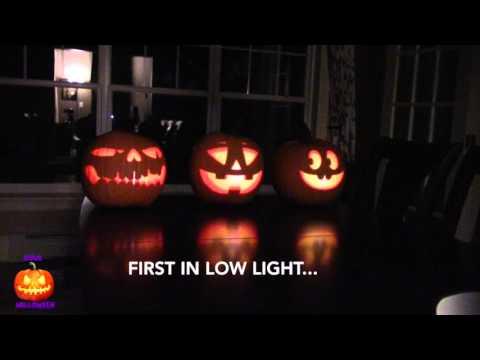 How To Make Singing Pumpkins Halloween Display