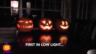 How To Make a Singing Pumpkins Halloween Display - Jack O