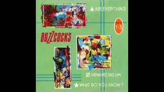 Watch Buzzcocks What Do You Know video