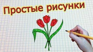 Простые рисунки #181 Как просто нарисовать тюльпаны ✿✿✿(Группа вконтакте: http://vk.com/mssimpledrawings Как нарисовать простой рисунок обычной ручкой за несколько минут. Спас..., 2015-03-14T20:46:31.000Z)