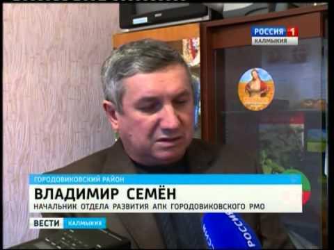В Городовиковском районе готовятся к проведению весенне-полевых работ