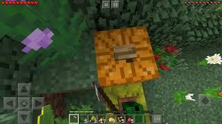 Minecraft PE Spurce House.